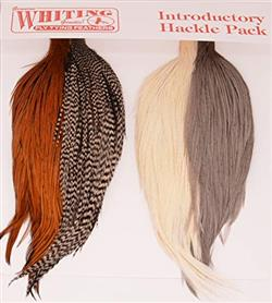 WHITING COMBO INTRO HACKLE PACK