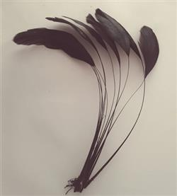 WHALESBACK STRIPPED ROOSTER FEATHERS